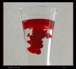 טיהור הדם, עבודת צילום של ענבל מאוריציו פז. (C)